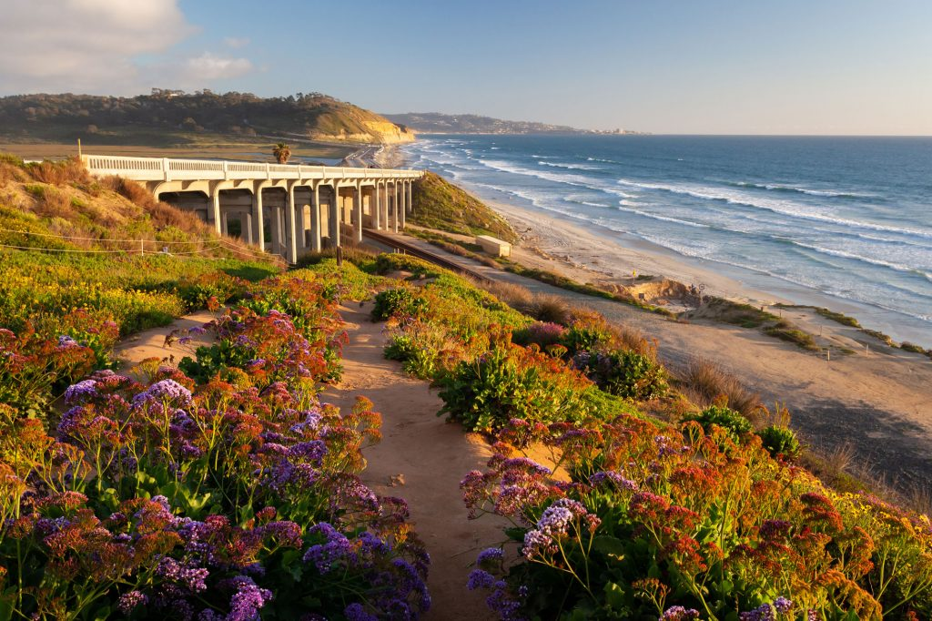 most beautiful places in san diego torrey pines